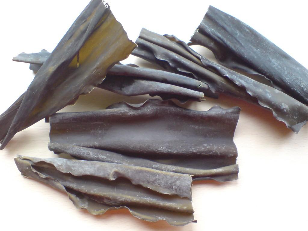 algi-kombu-1024x768