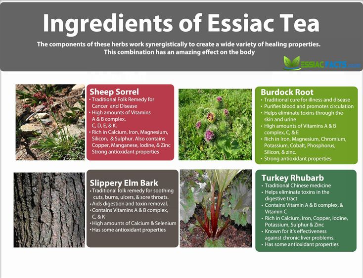 Ingredients-of-Essiac-Tea-734x562