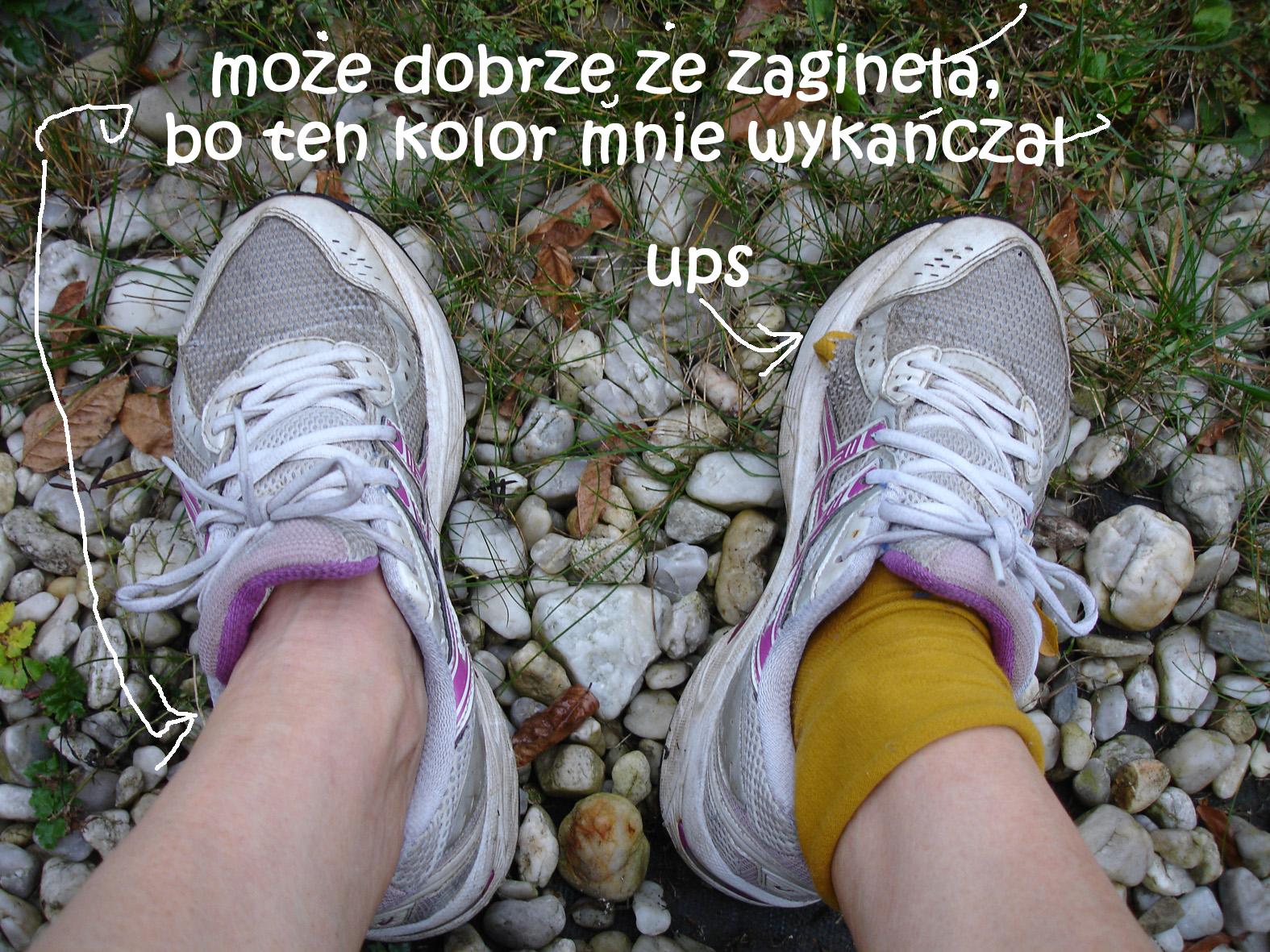 buty biegacze fakt