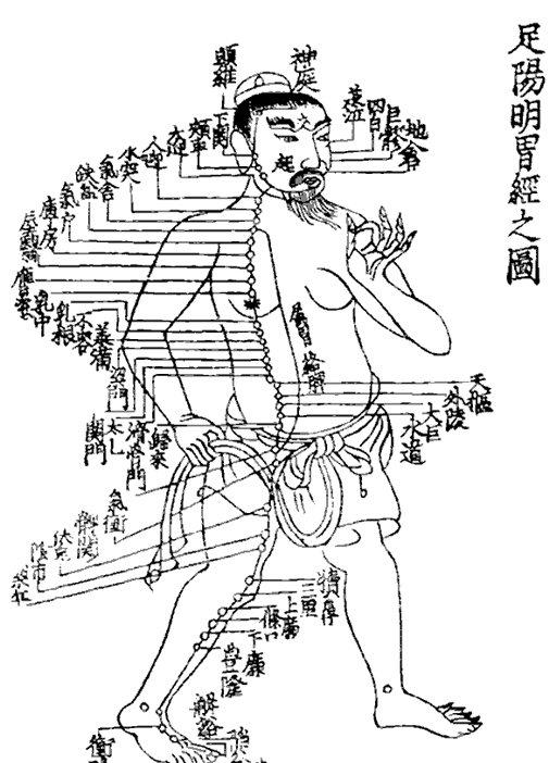chinese_medicine_sacred_lotus_arts