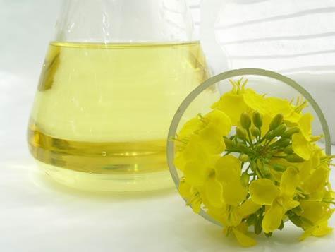 canola-oil_1297368152