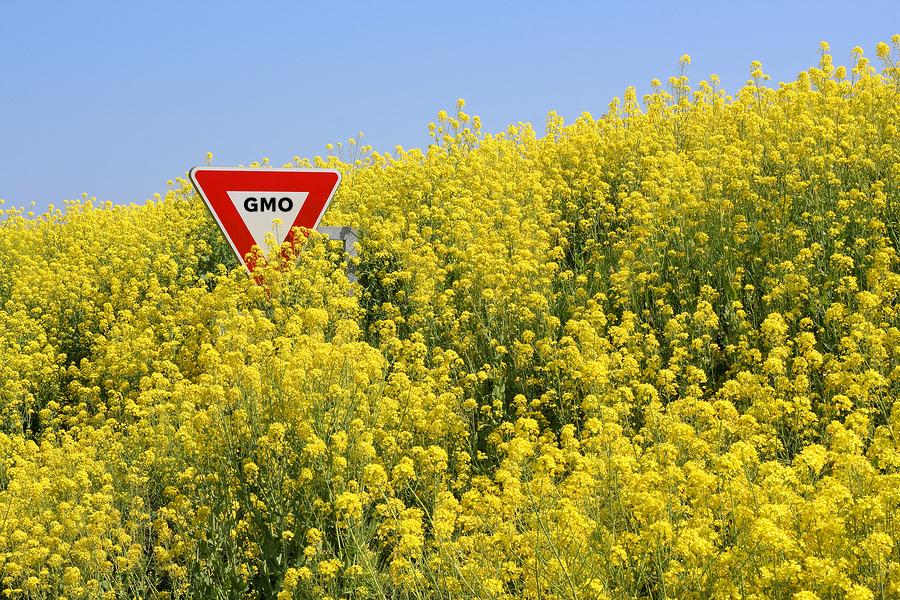 Stop GMO - Stop aux OGM